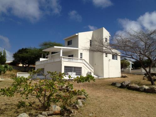 Bringamosa - Aruba